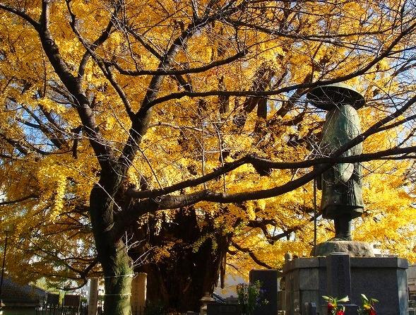 <2010年12月1日>港区探訪(その6):「麻布・青山・赤坂」編_c0119160_2136327.jpg