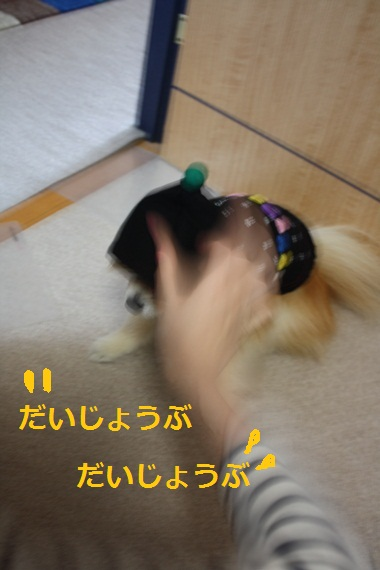 b0182968_10235287.jpg