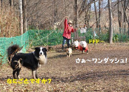 f0212597_931992.jpg