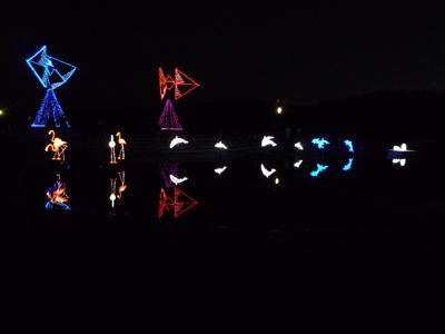 第5回 辻堂海浜公園 イルミネーション&ライトアップ 花と海と光のハーモニー _e0174913_20433556.jpg
