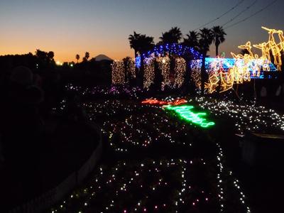 第5回 辻堂海浜公園 イルミネーション&ライトアップ 花と海と光のハーモニー _e0174913_20443733.jpg