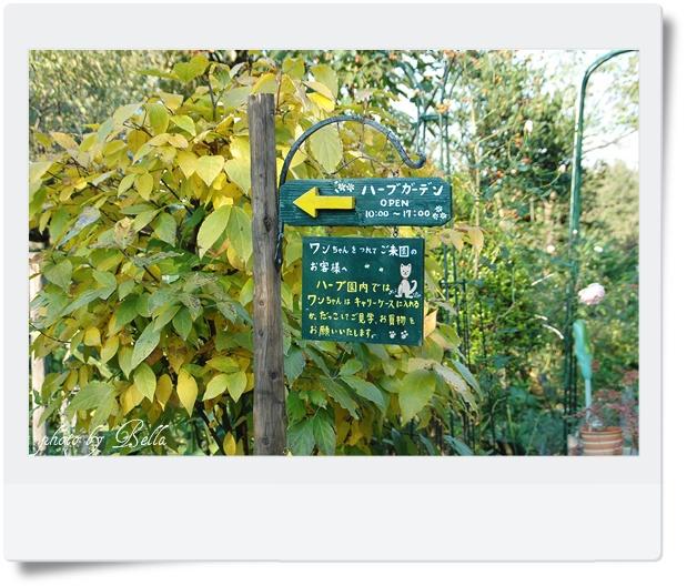 大河原梅園&ハーブガーデン_f0012718_10423218.jpg