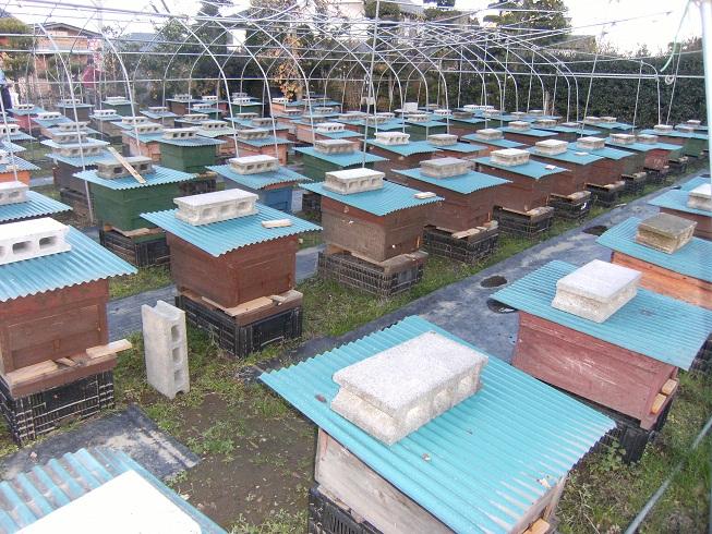 花園養蜂場へ行ってきました_d0155439_21281723.jpg