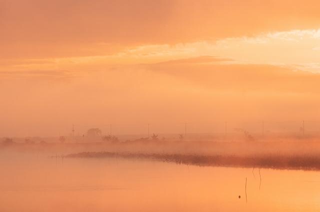 霧の朝 4_f0018464_6502655.jpg