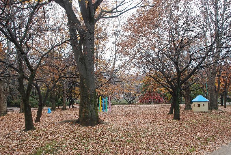 枯葉の与野公園_c0187781_22101935.jpg