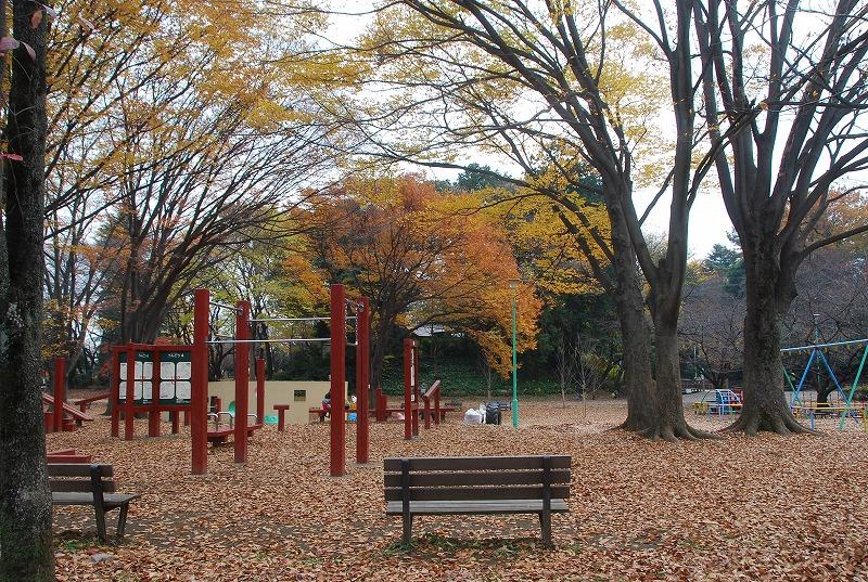 枯葉の与野公園_c0187781_229777.jpg