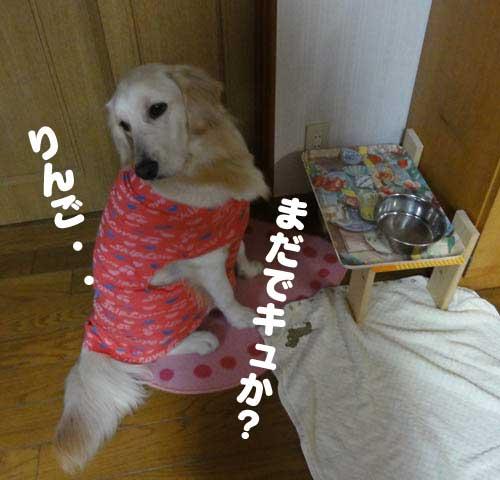 c0085188_20144497.jpg