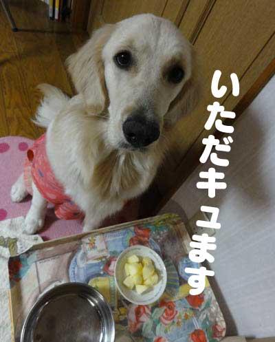 c0085188_2016544.jpg