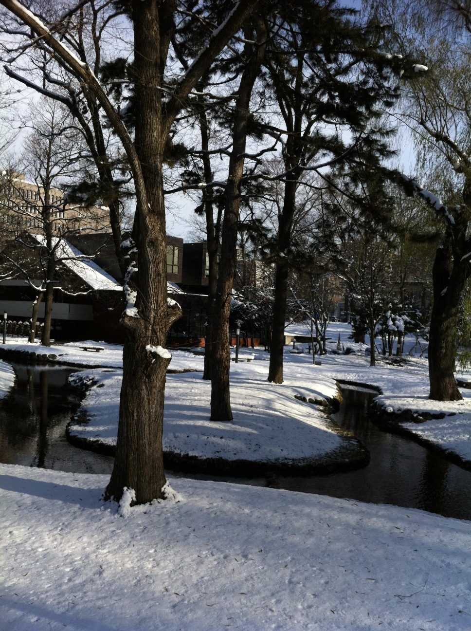 北海道大学_e0203309_21191452.jpg