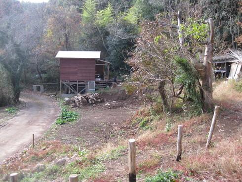 Green Green Village 日田で~~_a0125419_9385737.jpg