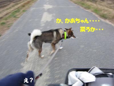 f0143123_2083645.jpg