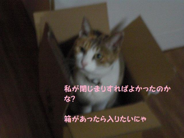 f0114128_21394248.jpg