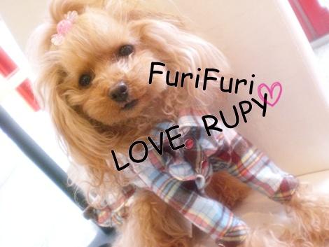 RUPY新作入荷しました☆_b0084929_13494213.jpg