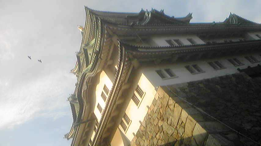 名古屋城!!_f0070743_2158159.jpg