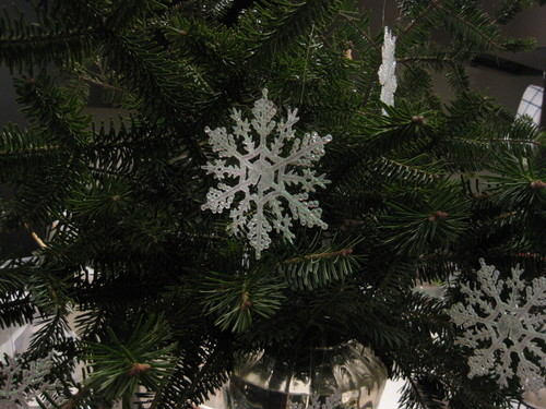 もみの枝で クリスマスリース作り_f0236260_18234842.jpg