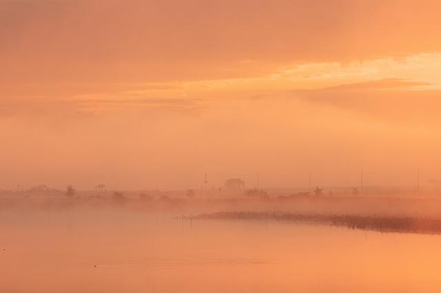 霧の朝 5_f0018464_7165843.jpg