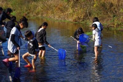 秋にも川で生き物さがし_e0008880_913527.jpg