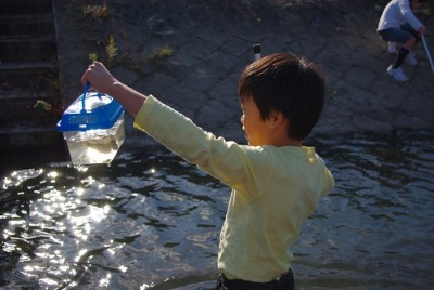 秋にも川で生き物さがし_e0008880_94425.jpg