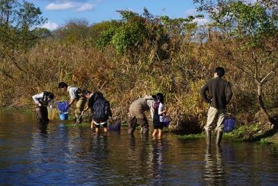秋にも川で生き物さがし_e0008880_973862.jpg