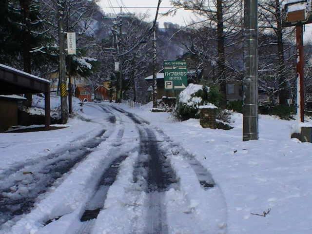 12/4の写真_a0140584_14504080.jpg