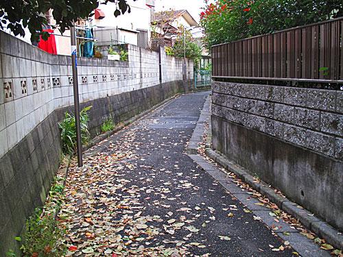 貫井川の暗渠(川跡)を辿る(2)貫井川下流部 _c0163001_23304763.jpg