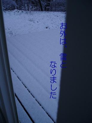 b0200310_9592978.jpg