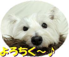 f0084422_2141437.jpg