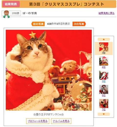 Yahoo!ペット第3回「クリスマスコスプレ」コンテスト第3位第7位猫 空ぽーしぇるのぇるろった編。_a0143140_22434817.jpg