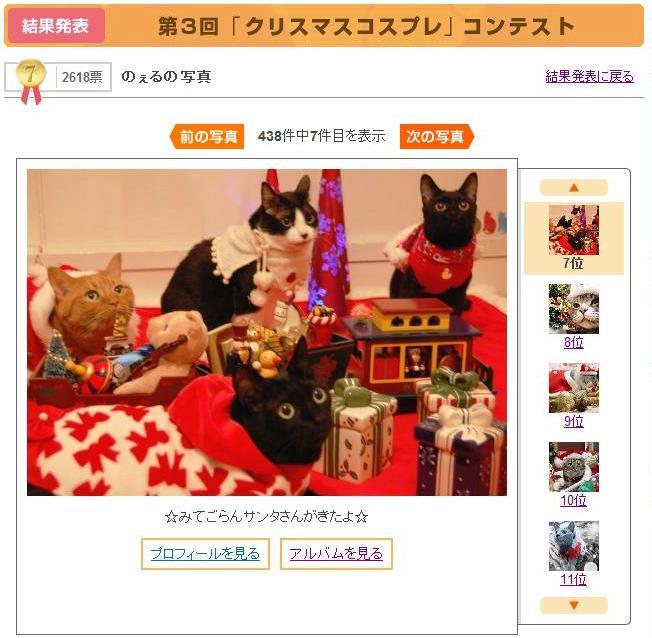Yahoo!ペット第3回「クリスマスコスプレ」コンテスト第3位第7位猫 空ぽーしぇるのぇるろった編。_a0143140_2244165.jpg