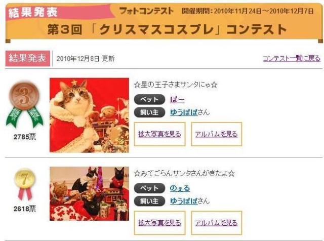 Yahoo!ペット第3回「クリスマスコスプレ」コンテスト第3位第7位猫 空ぽーしぇるのぇるろった編。_a0143140_22445366.jpg
