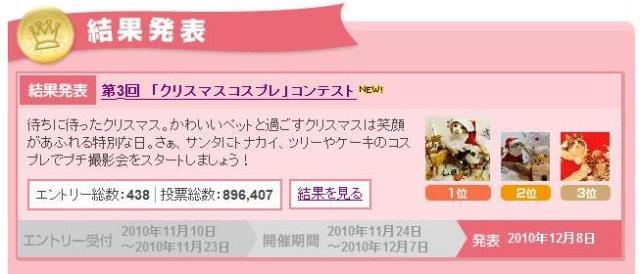 Yahoo!ペット第3回「クリスマスコスプレ」コンテスト第3位第7位猫 空ぽーしぇるのぇるろった編。_a0143140_22481027.jpg