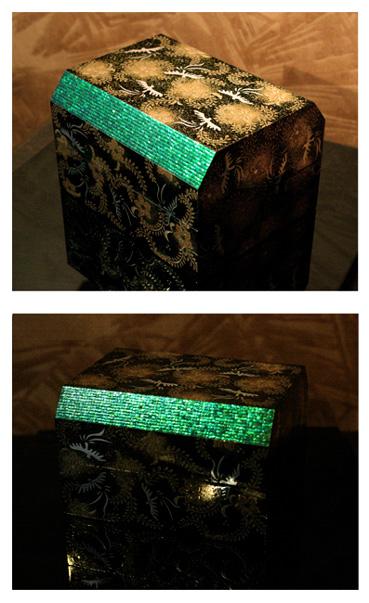タマムシの神秘な耀き_c0093654_1772789.jpg