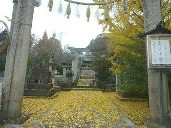 天照神社(1)ついにニギハヤヒの宮へ行きました!_c0222861_20531797.jpg