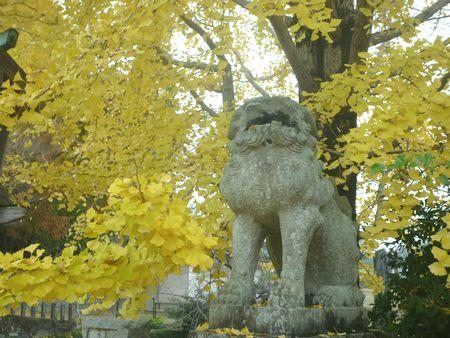 天照神社(1)ついにニギハヤヒの宮へ行きました!_c0222861_2054865.jpg