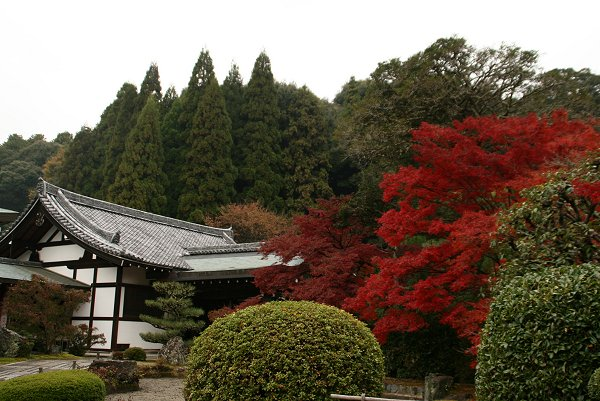 京都・嵐山の紅葉 『西芳寺』 編・その1_d0030373_2053647.jpg
