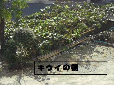 c0132205_13485995.jpg