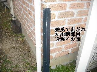 f0031037_2034265.jpg
