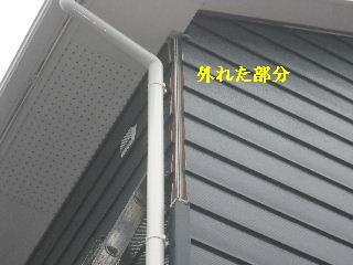 f0031037_2035085.jpg
