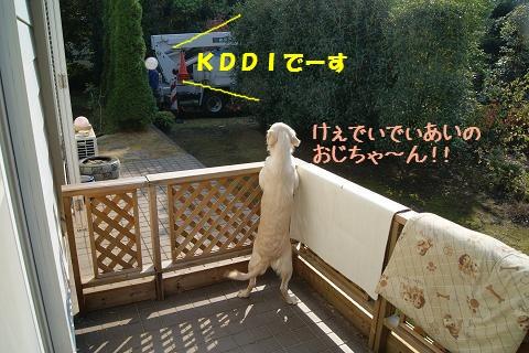 c0214455_1815989.jpg