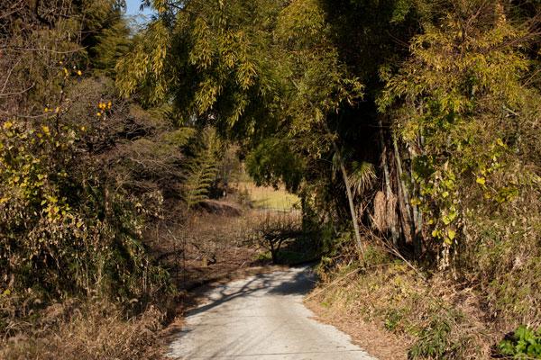 2010/12/09 麻生区黒川界隈_b0171364_1685094.jpg