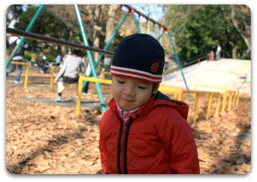 b0101387_1556158.jpg