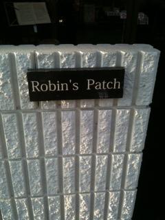 Robin\'s Patch_a0118722_1683095.jpg