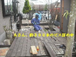 11日目の作業_f0031037_2158894.jpg