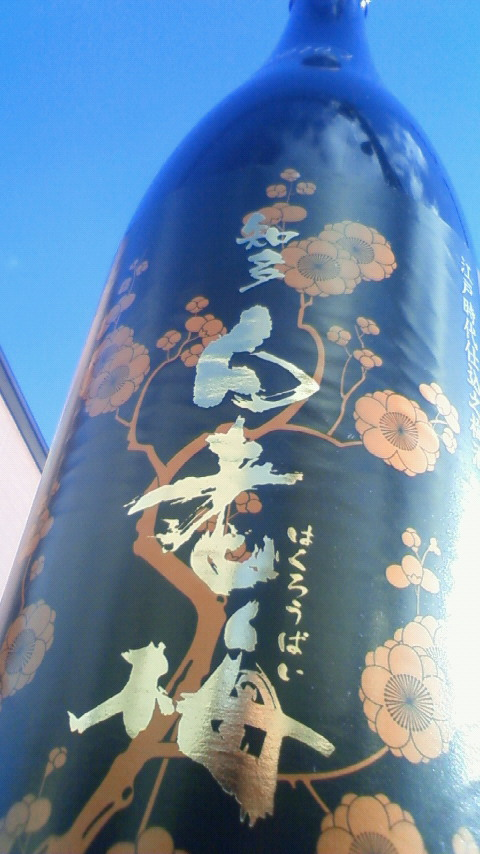 【地梅酒】 知多 白老梅 2010_e0173738_1142115.jpg