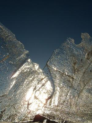 初氷_d0165772_21564020.jpg