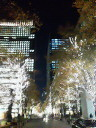 東京出張_a0047975_2175962.jpg