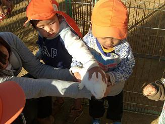 一日動物園_c0197584_15583568.jpg