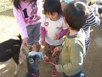 一日動物園_c0197584_16103120.jpg