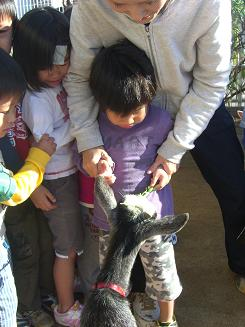 一日動物園_c0197584_16162659.jpg