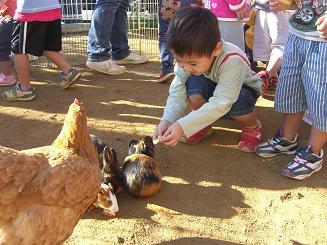 一日動物園_c0197584_1617050.jpg